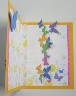 Butterflies Acetate Inside