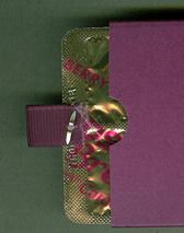 Eclipse gum holder back