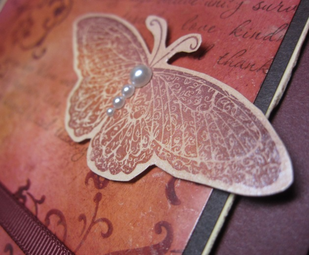 Mother of pearl - butterfly closeup