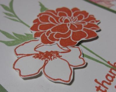 Demo 2 - michelle fab florets closeup