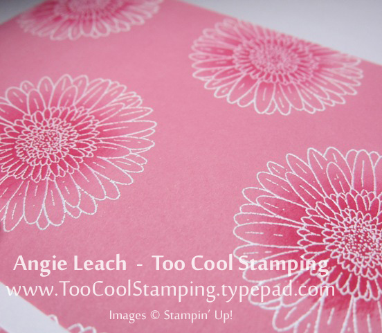 Pink - large blooms sponge