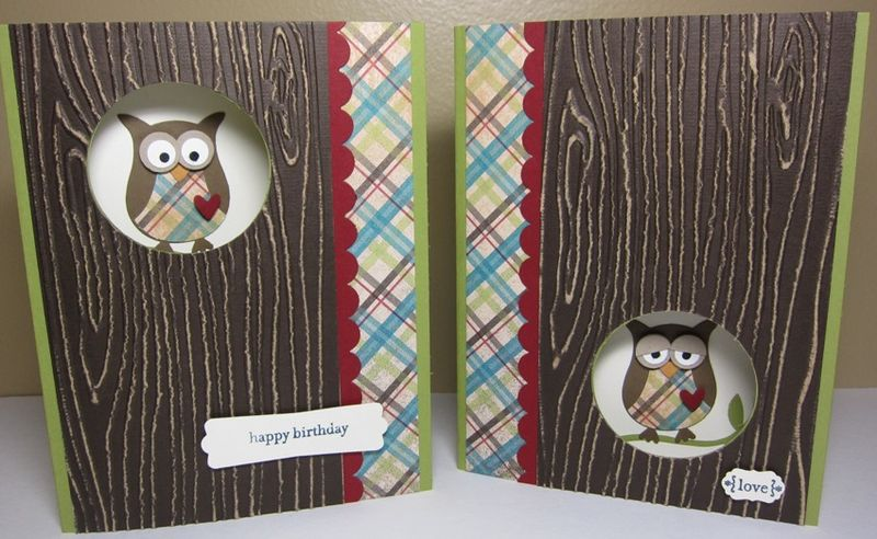 Wood owl - two cool