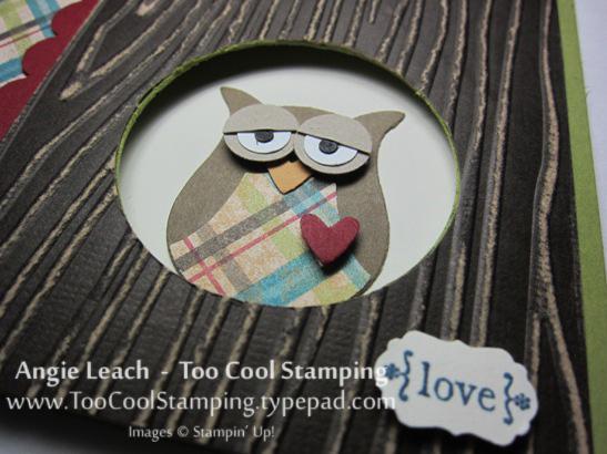 Wood owl - sleepy love 2