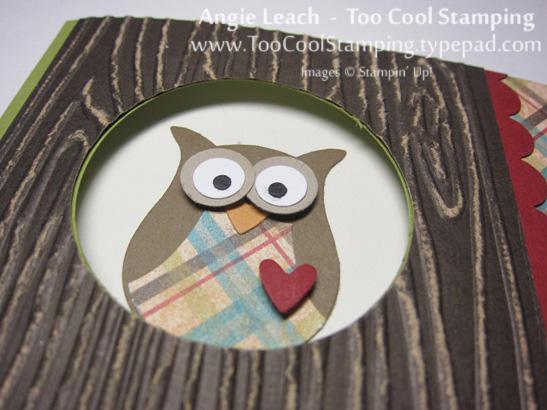 Wood owl - birthday 2