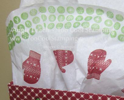Lg gift bag - tissue
