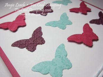 Butterflies 9 - melon 2