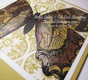 Swallowtail starfruit markers 2