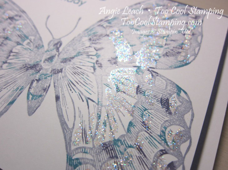 Swallowtail thumping h2