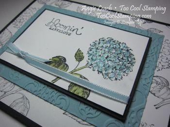 Best of flowers hydrangea 5