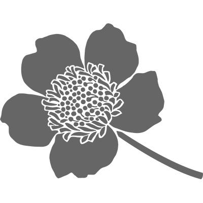 Boutique blossom 132663L