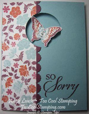 Papillon sorry - window
