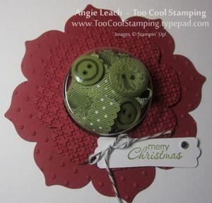 Poinsettia - green no leaf