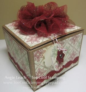 Gift box - tulle one cool