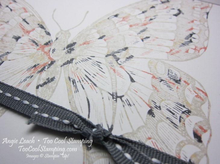 Swallowtail thumping jodi 2