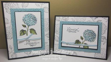 Best of flowers hydrangeas - two cool