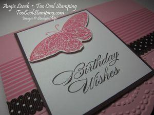 Best butterflies pink - h3
