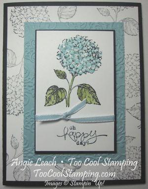 Best of flowers hydrangea 1