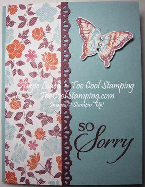 Papillon sorry - no window