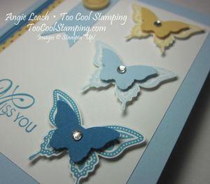 Best butterflies trio 2