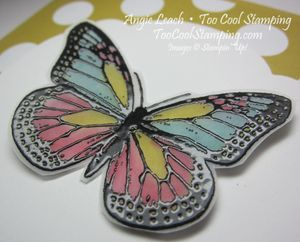 Butterflies stained glass - celebrate 2