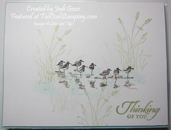 Jodi wetlands - sandpipers copy