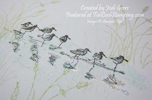 Jodi wetlands - sandpipers 2 copy