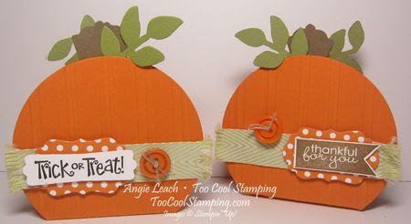 Pumpkin box - two cool