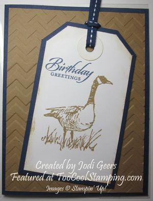 Jodi wetlands - goose copy