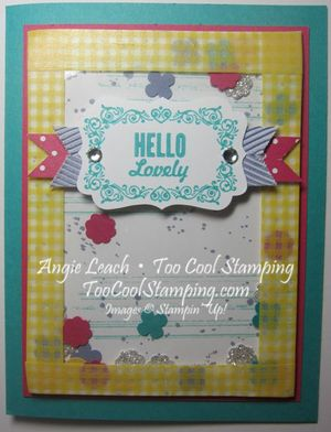 Washi shaker - hello lovely