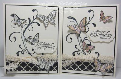 Papillon potpourri medley - two cool