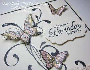 Papillon potpourri medley - color2