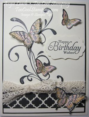 Papillon potpourri medley - color