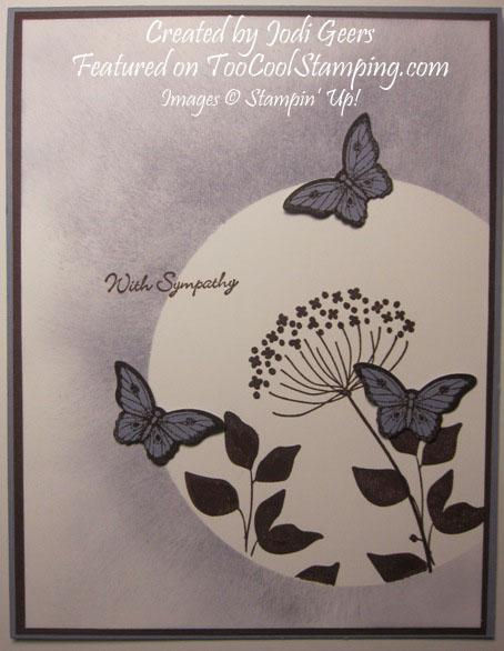 Jodi - butterfly sympathy copy