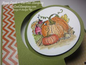 Harvest pumpkin - yellow3