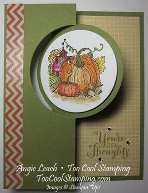 Harvest pumpkin - yellow