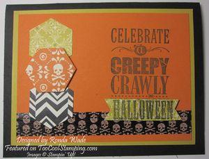 Ronda - creepy crawly copy