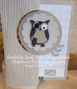 Sandy haynes lynn schulz - owl pirate copy