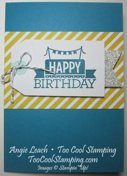 Note 12 - indigo plain birthday