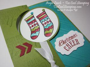 Color Me Bermuda - stocking2