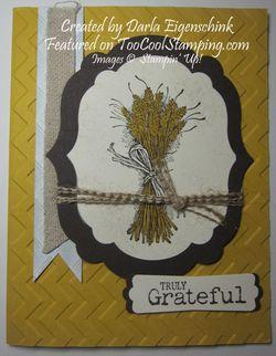 Darla - grateful wheat copy