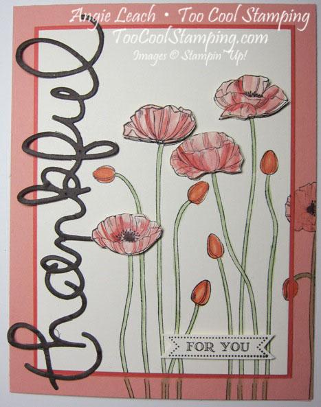 Thankful poppies