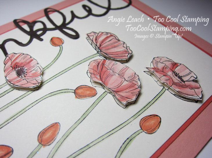 Thankful poppies 2