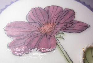 Peaceful petals purple - razzleberry 3