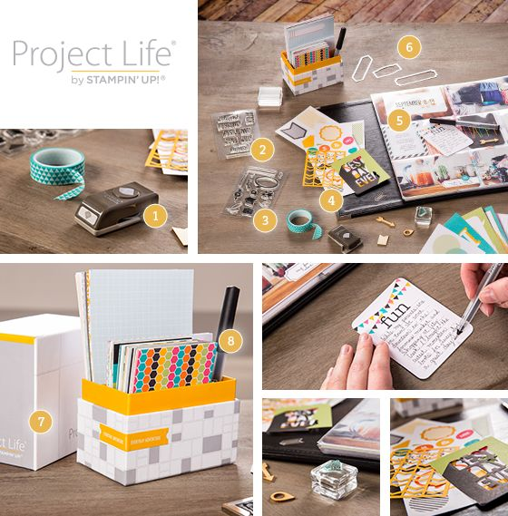 Project life graphic