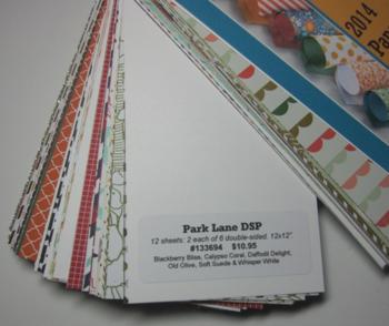 Paper sampler divider page