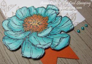 Blended bloom with hope - coastal 2