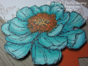 Blended bloom with hope - coastal 3