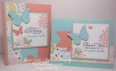 Sweet butterflies - two cool
