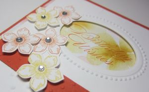 Peggy - watercolor petite petals 2