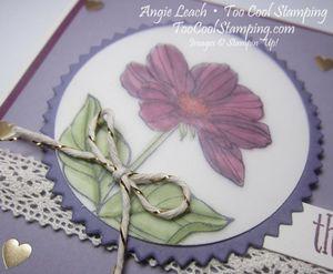 Peaceful petals purple - razzleberry 2